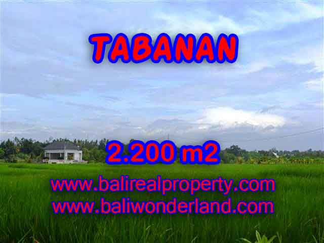 DIJUAL TANAH MURAH DI TABANAN - LAND FOR SALE IN TABANAN BALI