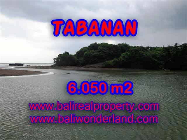 Outstanding Property for sale in Bali, land for sale in Tabanan Bali – TJTB098