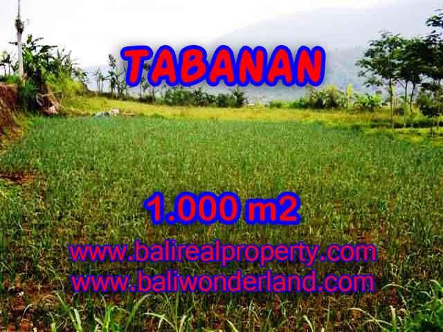 Beautiful Property for sale in Bali, LAND FOR SALE IN TABANAN Bali – TJTB101