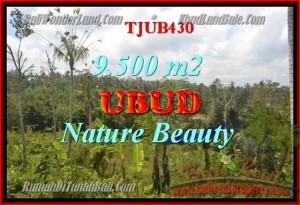 Beautiful PROPERTY UBUD BALI 9,500 m2 LAND FOR SALE TJUB430