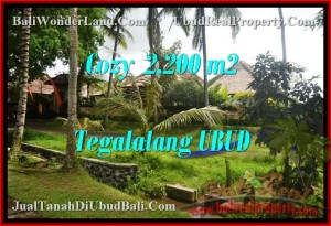 Magnificent UBUD 2,200 m2 LAND FOR SALE TJUB462