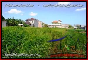 Beautiful PROPERTY 770 m2 LAND IN CANGGU BALI FOR SALE TJCG148
