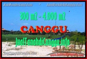 FOR SALE Exotic PROPERTY 300 m2 LAND IN CANGGU TJCG151