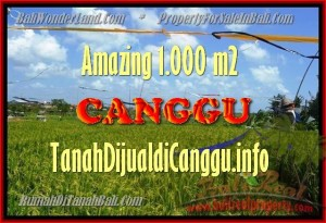 Exotic 1.000 m2 LAND FOR SALE IN CANGGU TJCG154