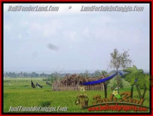 LAND FOR SALE IN Canggu Cemagi TJCG158
