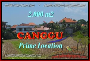 Beautiful 2.000 m2 LAND IN CANGGU FOR SALE TJCG167