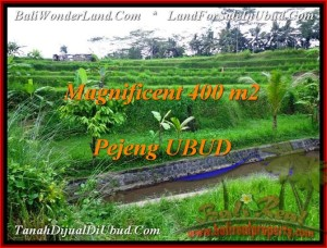 FOR SALE Exotic PROPERTY LAND IN Ubud Pejeng BALI TJUB483