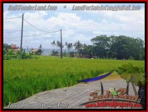 560 m2 LAND SALE IN Canggu Cemagi BALI TJCG138