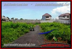 Beautiful PROPERTY 335 m2 LAND FOR SALE IN CANGGU BALI TJCG142