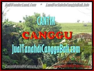 Exotic Canggu Pererenan LAND FOR SALE TJCG143