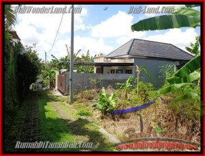 Affordable LAND IN Canggu Pererenan FOR SALE TJCG145