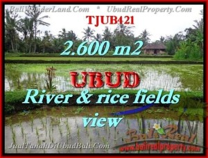 Exotic LAND FOR SALE IN Ubud Tegalalang BALI TJUB421