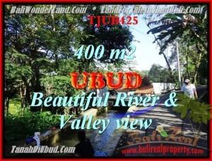 Magnificent PROPERTY UBUD BALI 400 m2 LAND FOR SALE TJUB425
