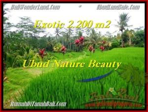 2,200 m2 LAND FOR SALE IN UBUD TJUB480