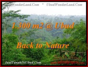 Affordable 1,300 m2 LAND IN UBUD FOR SALE TJUB481