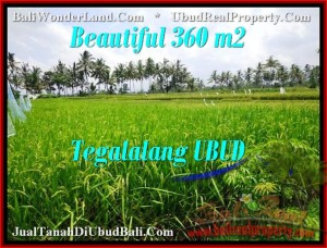 Affordable PROPERTY LAND SALE IN Ubud Tegalalang BALI TJUB482