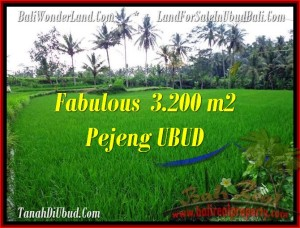 Beautiful PROPERTY LAND FOR SALE IN UBUD TJUB484