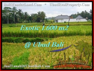 FOR SALE Magnificent 1,600 m2 LAND IN UBUD TJUB487