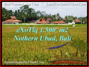 Beautiful 1,500 m2 LAND FOR SALE IN UBUD BALI TJUB488