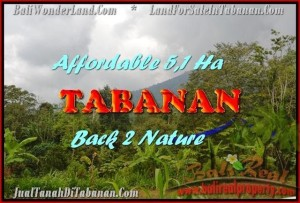 TABANAN 51,100 m2 LAND FOR SALE TJTB166