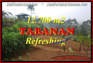 Beautiful PROPERTY LAND IN TABANAN FOR SALE TJTB167