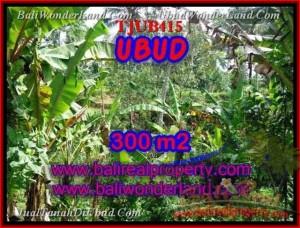 Beautiful Sentral Ubud BALI LAND FOR SALE TJUB415
