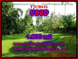 Exotic PROPERTY UBUD BALI 1,600 m2 LAND FOR SALE TJUB416