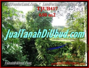 Magnificent LAND IN Sentral Ubud BALI FOR SALE TJUB417