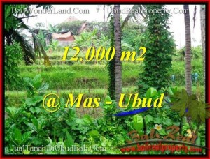 FOR SALE Beautiful PROPERTY 12,000 m2 LAND IN UBUD BALI TJUB492