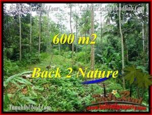 FOR SALE LAND IN Ubud Tampak Siring TJUB493