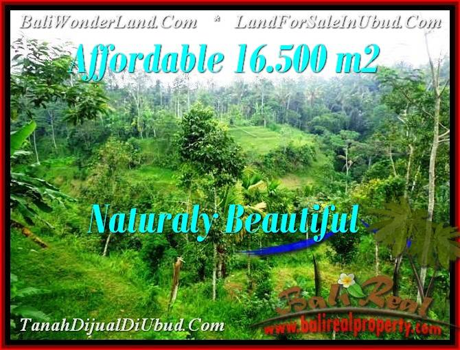 Affordable LAND FOR SALE IN Ubud Tampak Siring BALI TJUB494