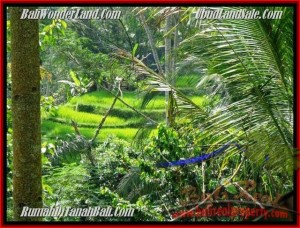 Exotic LAND IN Ubud Tegalalang BALI FOR SALE TJUB495