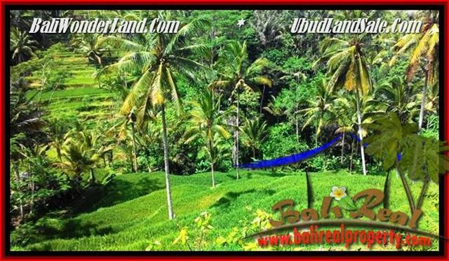 Magnificent Ubud Tegalalang BALI LAND FOR SALE TJUB496