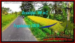 Beautiful LAND SALE IN Ubud Tegalalang BALI TJUB497