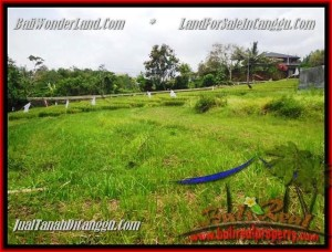 FOR SALE Magnificent LAND IN Canggu Pererenan TJCG161