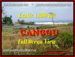 FOR SALE Magnificent LAND IN Canggu Pererenan TJCG162