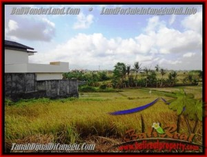 Magnificent PROPERTY 500 m2 LAND FOR SALE IN CANGGU BALI TJCG163