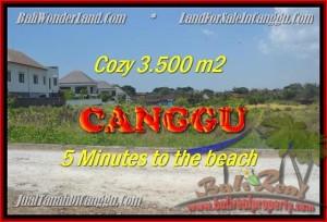 Beautiful PROPERTY 3.500 m2 LAND IN CANGGU BALI FOR SALE TJCG165