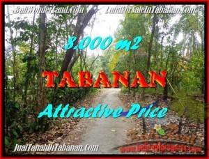 Magnificent LAND SALE IN Tabanan Selemadeg BALI TJTB161