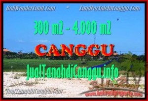 Magnificent PROPERTY 300 m2 LAND IN CANGGU BALI FOR SALE TJCG151