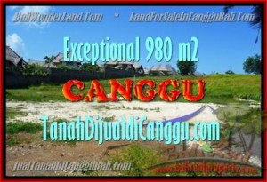 FOR SALE Affordable PROPERTY 980 m2 LAND IN CANGGU TJCG152