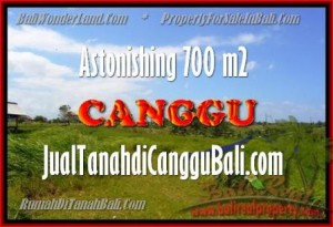 Exotic 700 m2 LAND IN CANGGU FOR SALE TJCG155