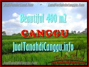 Affordable 400 m2 LAND FOR SALE IN CANGGU TJCG156