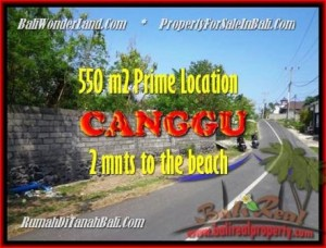 Magnificent PROPERTY LAND SALE IN Canggu Batu Bolong BALI TJCG159