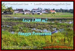 Magnificent PROPERTY CANGGU 1,000 m2 LAND FOR SALE TJCG177