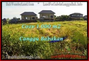 FOR SALE Magnificent 1,000 m2 LAND IN Canggu Batu Bolong  BALI TJCG178
