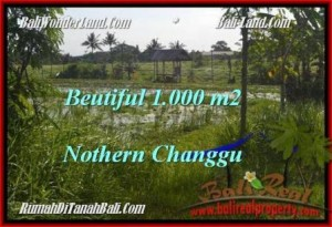 Affordable PROPERTY 1,000 m2 LAND FOR SALE IN CANGGU TJCG180