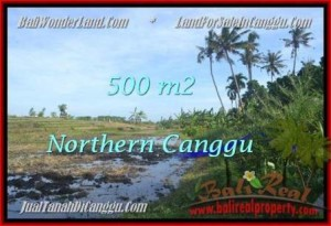 Exotic LAND FOR SALE IN Canggu Pererenan TJCG181