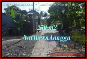 Exotic LAND FOR SALE IN Canggu Pererenan TJCG182