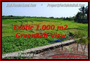 Affordable PROPERTY LAND SALE IN Canggu Pererenan TJCG184